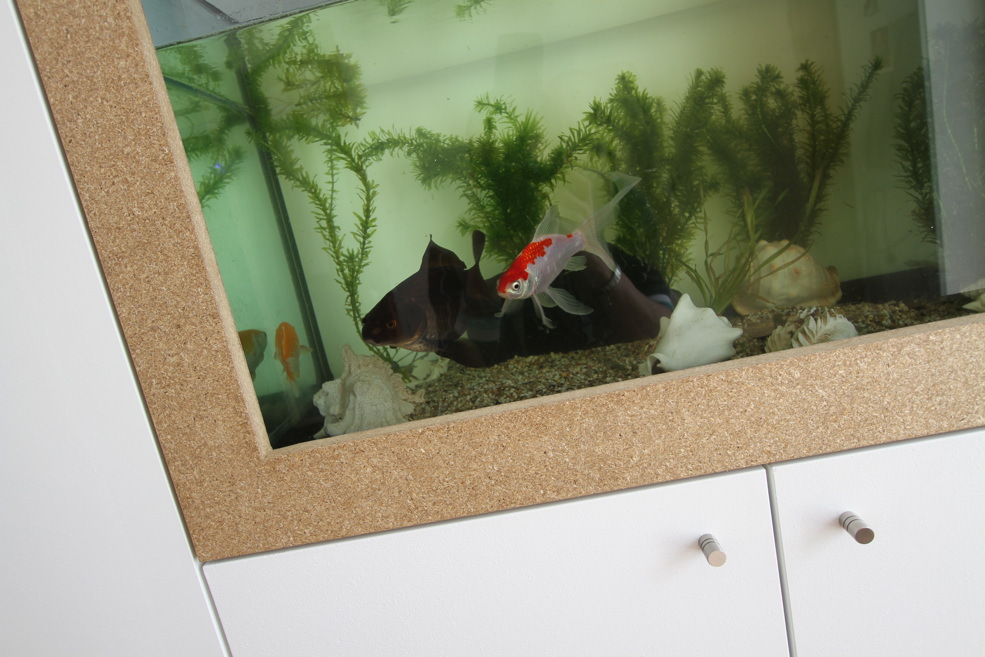 Fish tank built into fitted cubpaords.