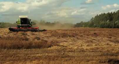 Combine harvesting flaz seed.